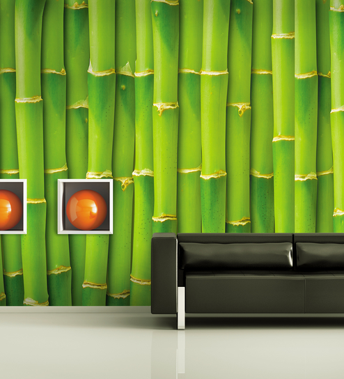 The Green Bamboo Wall - 1662 - Wallskin